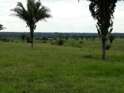 Área rural med. 1064hec com 700hec pasto. Acre