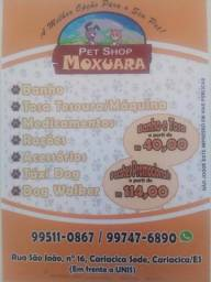 Pet shop Moxuara