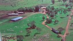 Fazenda de 60 alqueires