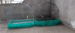 Duas gaiolas para canário