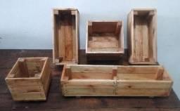 Vasos de madeira pinus