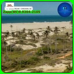 Loteamento Villa Cascavel 02- Invista já no melhor pra toda sua Familia!$@#!