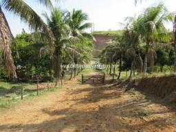 Caetano Imóveis - Fazendinha para criação com 7 hectares e acesso asfaltado
