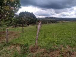 Vendo ou troco fazendinha 25 hectares