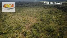 Fazenda com 100 Hectares à venda em Humaita/AM-Cód FA0161