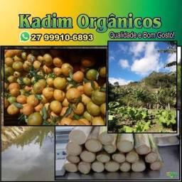 Produtos orgânicos da roça SEMANA SANTA