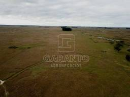445 hectares