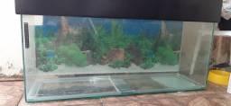 Leia o anuncio,aceito proposta por coisas de aquario
