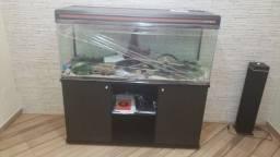 Aquario boyo ea 150