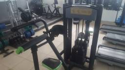 Maquina Triceps - Marca Riguetto