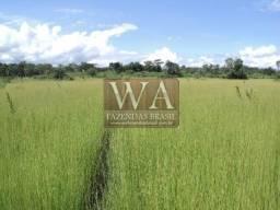 Fazenda negócio de oportunidade a Wa Fazendas Brasil apresenta
