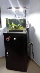 Aquário camarões