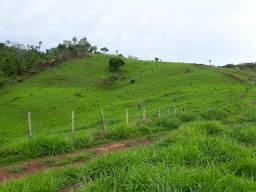 Fazenda 12alq 9alq de Pasto Buritirana porteira fechada 500mil Airton 984979080