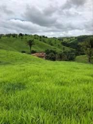 Fazenda com 1.200ha pra boi, em Lagamar!!