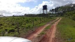 51,65 alqueires pronta por R$ 1.000.000,00 há 140 km de Belém