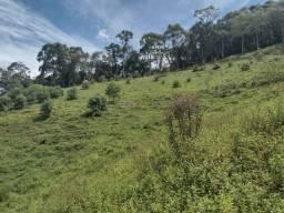 Terreno de 09 hectares em Marmelópolis- Sul de Minas Gerais