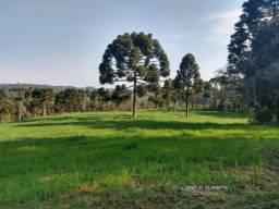Fazenda para Venda em Bituvinha Mafra-SC