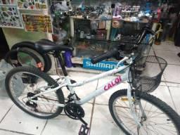 Título do anúncio: Bicicleta Caloi Ceci Aro 24 / 21 Marchas