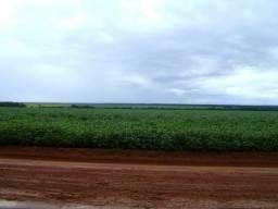 Arrendamento Fazenda 450 alq Pr