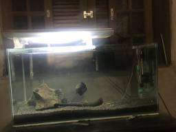 Aquario 100L