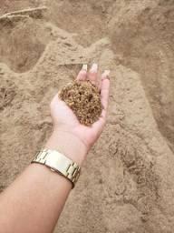 Areia de RIO sem pedras