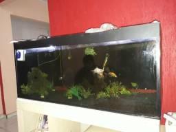 Aquario 360 litros