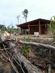Vendo terra de 800 alqueiro com 260 de abertura a 130 km de anapu 5 mil reais por alquero.