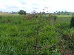 Terreno trecho seco vila pitica