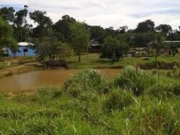 Vendo Sítio com 300 hectares - km 13 sentido Humaitá