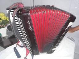 Sanfona Baile