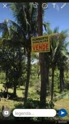 Fazenda na estrada Ilhéus/ Sambaituba