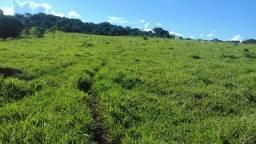 Sitio Municipio de Taquaral-GO. 93 km de Goiânia