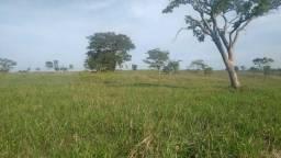 Fazenda 80 alqueires Dupla aptidão em Corumbaíba Goiás