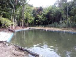 Fazenda Paraiso a venda 16 hecatres por R$420 mil reais a 34 km de Castanhal