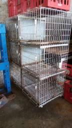 Gaiola para pet shop  6 animais