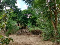 Título do anúncio: Terreno de chácara com pomar em Artur Nogueira - SP