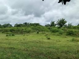 Vendo colonha rio purus 35 hectares toda no pasto
