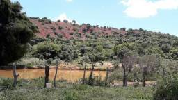 Terreno em Periquito - Fazenda Santa Cruz - MG