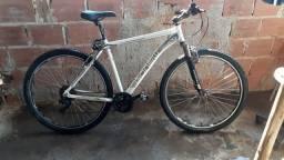 Bike Gonew Enorphine 5.3 Aro 29