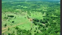 Fazenda reliquia,paraizo das aguas ms