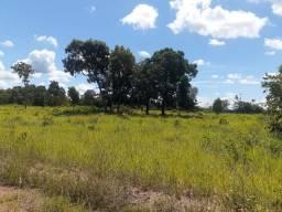 Fazenda com 160 hectares em Livramento
