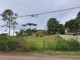 Terreno de esquina para locação na Colônia Murici