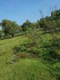 Fazenda em bagre Pa 4 mil hectares