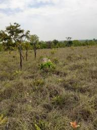 Terra com 259 hectares, ótimo investimento