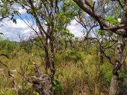 Fazenda com 6.566ha.Para compensação de  reserva legal-bioma cerrado-Amazonia legal-Parque