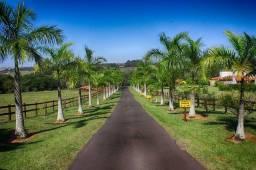 Fazenda JM- Paraná