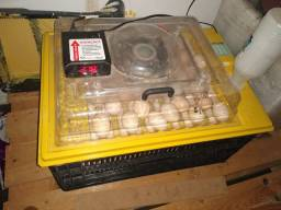 Vende-se chocadeira 70 ovos