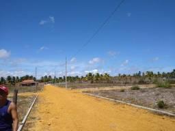 Terreno no povoado flexeira