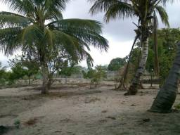 Sitio em Tangará