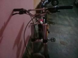 Bike prince voltage